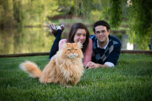 Couple lying on the grass with their cat | Anne Lord Photography