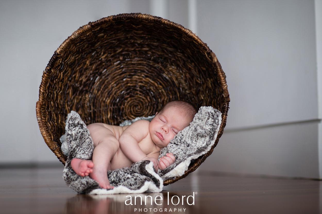 Family Portrait Photography Va_SHz10